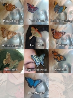Butterfly Barrettes